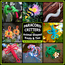 Paracord Project & Celtic Knot Instruction | Fusionknots com